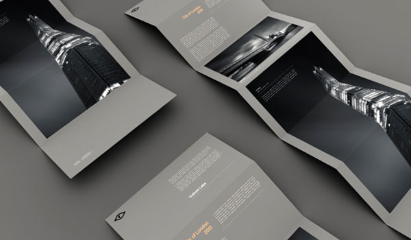 4-flyer-designs_pioneer